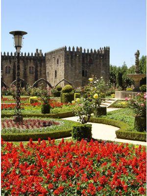 Tour de meio dia em Braga